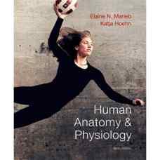 آناتومی و فیزیولوژی انسان (ماریب و هون) (ویرایش نهم 2013)
