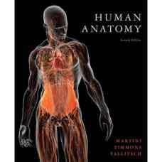 آناتومی انسان (مارتینی، تیمونز و تالیچ) (ویرایش هفتم 2011)
