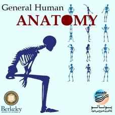 دوره آموزشی آناتومی عمومی انسان - دانشگاه برکلی