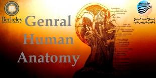 آناتومی انسان دانشگاه برکلی