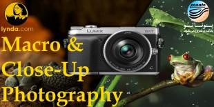 آموزش عکاسی ماکرو و کلوزآپ - شرکت لیندا
